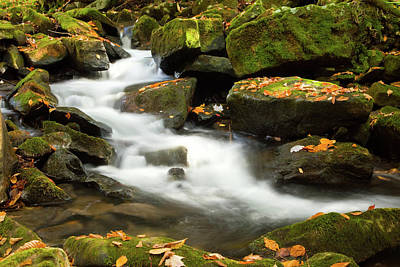 Photograph - Green Moss Autumn Leaves Spillway Waterfall by John Stephens