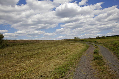 Franklin Township Photograph - Griggstown Native Grassland Preserve by David Letts
