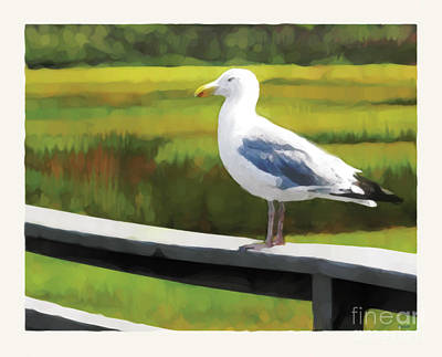 Art Print featuring the digital art Gull One by David Klaboe