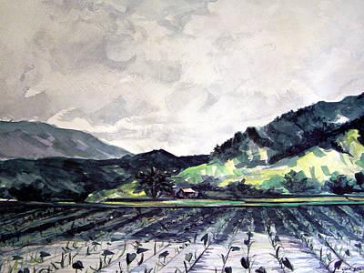 Hanalei Valley Art Print by Jon Shepodd