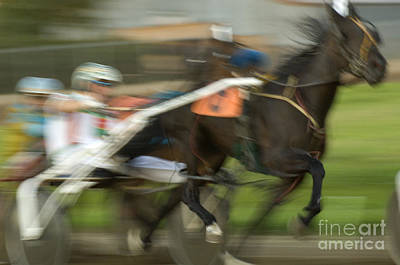 Harness Racing Photograph - Harness Racing 8 by Bob Christopher