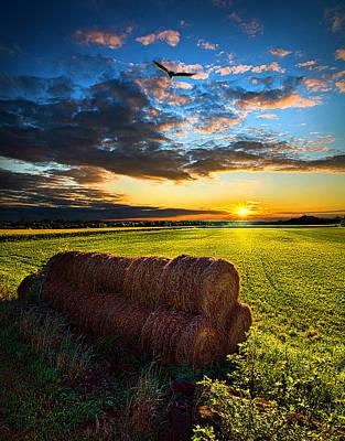 Harvest Photograph - Harvest by Phil Koch