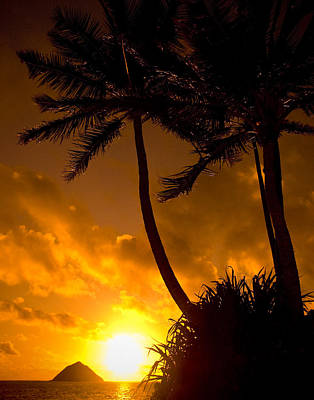 Photograph - Hawaiian Sunset by Mickey Clausen