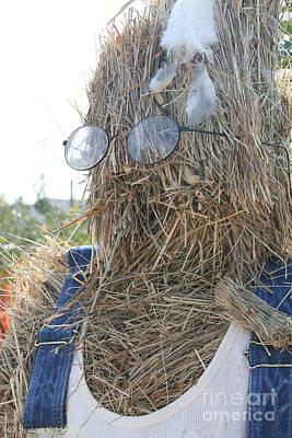 Photograph - Hay Man by Susan Herber