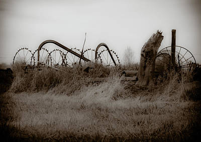 Antique Hay Rake Photograph - Hay Rake Tracy Ca by Troy Montemayor