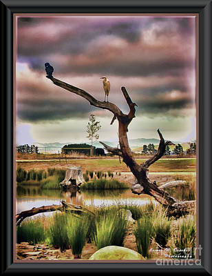 Photograph - Hdr Wetlands by James  Dierker