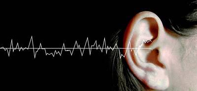 Hearing Art Print by Neal Grundy