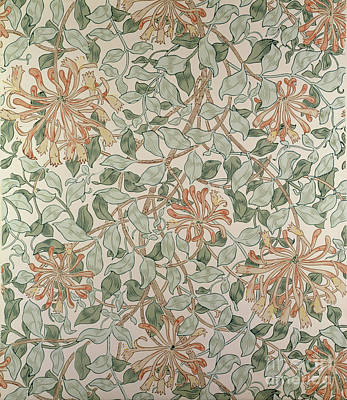Honeysuckle Design Art Print by William Morris