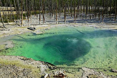 Silica Photograph - Hot Springs Yellowstone National Park by Garry Gay