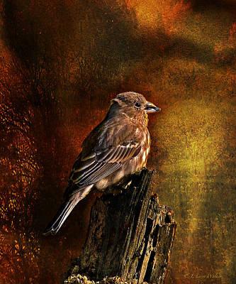 Digital Art - House Finch With Sunflower Seed by J Larry Walker