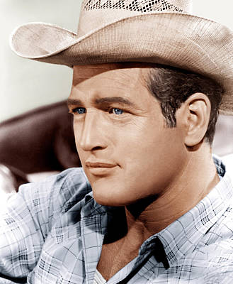 Incol Photograph - Hud, Paul Newman, 1963 by Everett