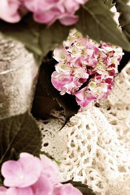 Hydrangeas And Lace Art Print by Stephanie Frey