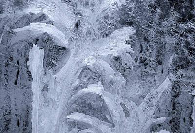 Iceflower Photograph - Ice-flower by Odon Czintos