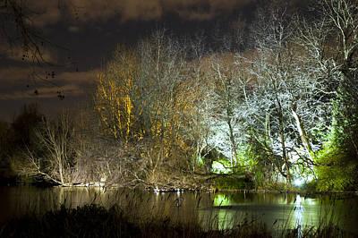 Illuminated Trees At St James Park London By Night Original