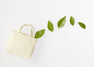 Y120831 Photograph - Image Of Eco Bag by sozaijiten/Datacraft