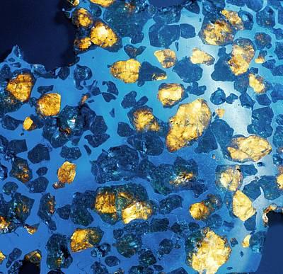 Imilac Meteorite Sample Art Print by Detlev Van Ravenswaay