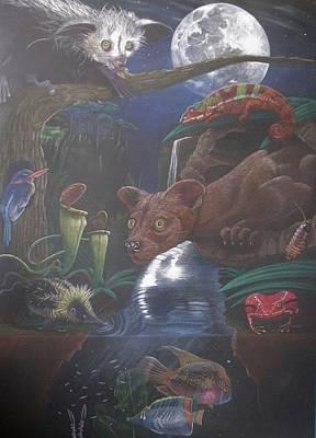 Indigenous Creatures Of Madagascar Art Print