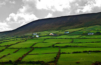 Photograph - Irish Countryside by Edward Peterson