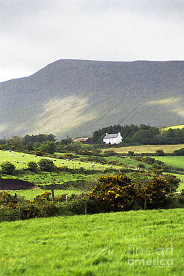 Irish Farm - Dingle Peninsula  Art Print by Gordon Wood