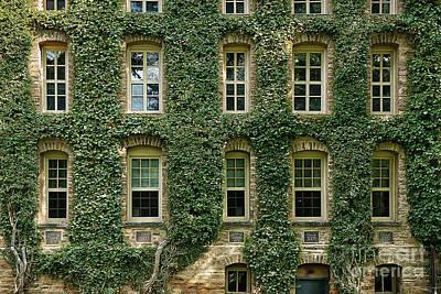 Ivy League Print by John Greim
