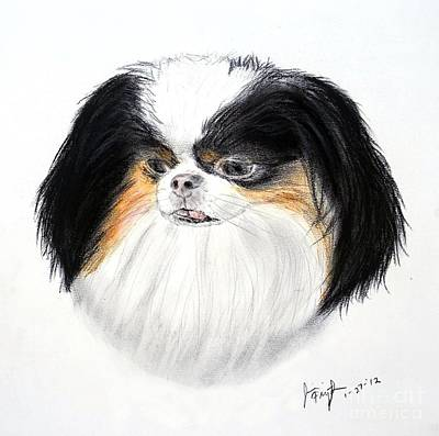 Drawing - Japanese Chin Dog Portrait by Jim Fitzpatrick