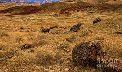Photograph - John Day Painted Hills by Adam Jewell