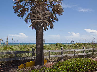 Juan Ponce De Leon Landing Site In Florida Art Print by Allan  Hughes