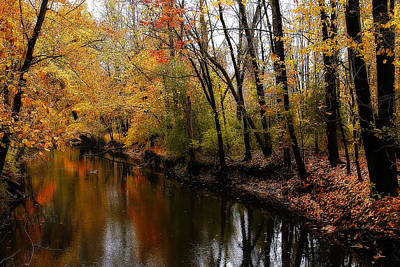 Photograph - Kearsley Creek by Scott Hovind