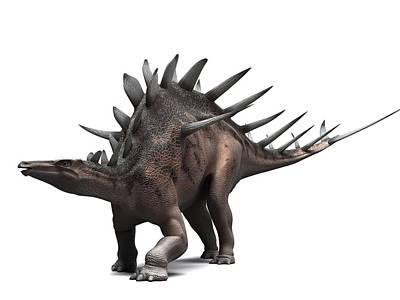 Kentrosaurus Dinosaur, Artwork Art Print by Sciepro