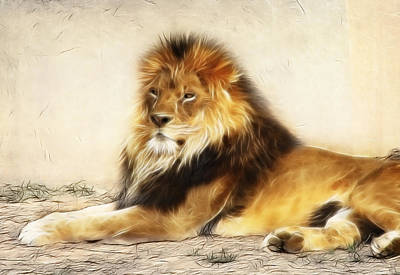 King Art Print by Tilly Williams
