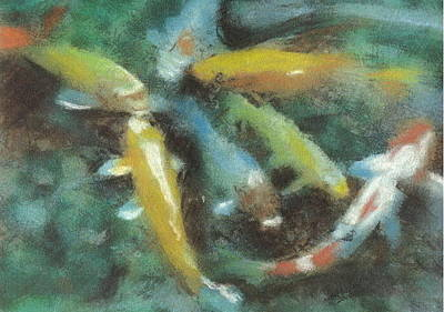 Pastel - Koi by John Brisson