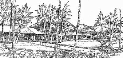 Art Print featuring the drawing Kukio Estate by Andrew Drozdowicz