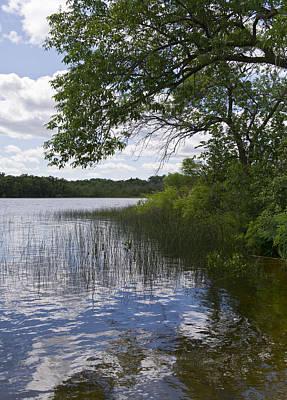 Photograph - Lake Shore by Gary Eason