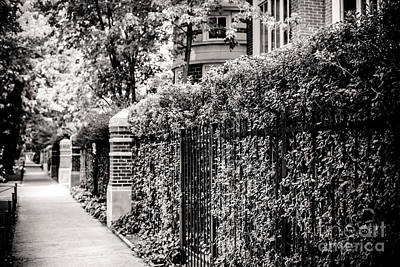 Brick Duplex Photograph - Lakeview Neighborhood by Christina Klausen