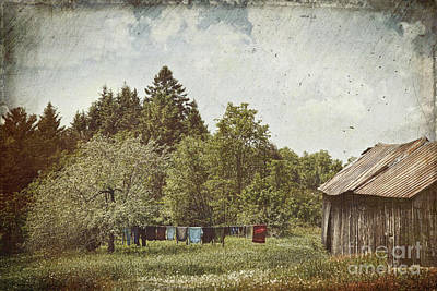 Laundry Drying On Clothesline On A Summer Day Art Print