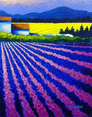 Colorist Painting - Lavender Field Provence by John  Nolan
