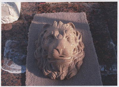 Sculpture - Lion Head by Memo Memovic