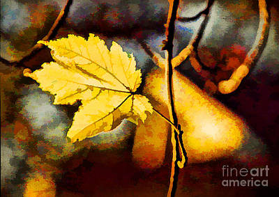 Lone Leaf Art Print by Darren Fisher