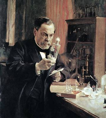 Sour Photograph - Louis Pasteur, French Microbiologist by