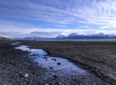 Art Print featuring the photograph Low Tide by Michele Cornelius