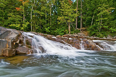 Photograph - Lower Falls by Paul Mangold