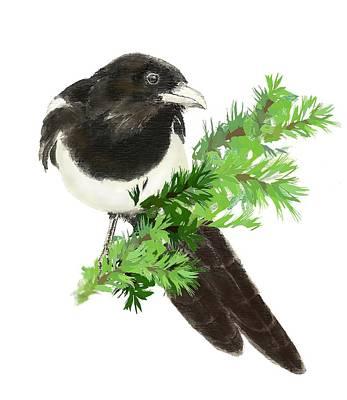 Birding Painting - Magpie by Carole Barkett