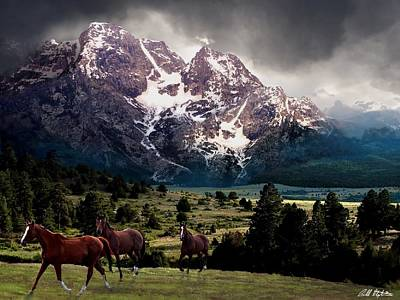Teton Digital Art - Majestic by Bill Stephens