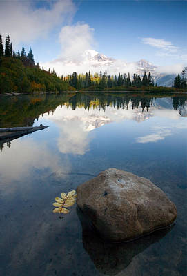 Benches Photograph - Majesty Hidden by Mike  Dawson