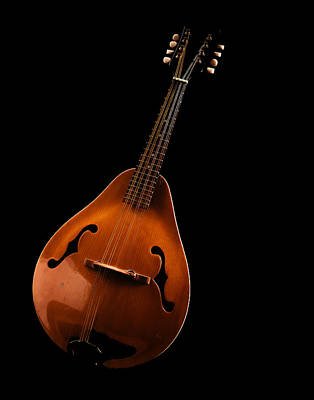 Photograph - Mandolin by Jean Noren