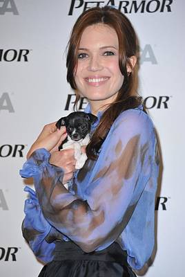 Mandy Moore In Attendance For Aspca Art Print by Everett