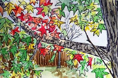 Maple Tree Sketchbook Project Down My Street Art Print by Irina Sztukowski