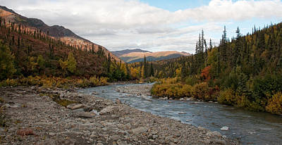 Art Print featuring the photograph Marion Creek by Gary Rose