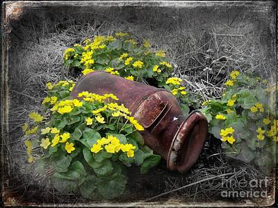 Marsh Marigolds Art Print by The Stone Age