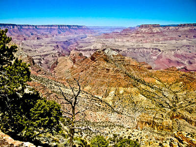 Painting - Mather Point Grand Canyon by Bob and Nadine Johnston